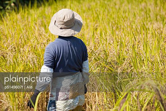 p5149607f von AID photography