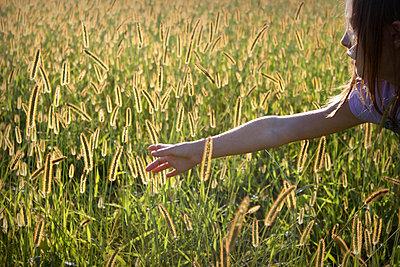 Girl in a field - p1019m739853 by Stephen Carroll
