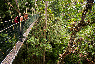 A woman looking down from a tree canopy walkway, Teman Negara National Park, Malaysia - p30119765f by Lothar Schulz