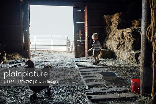 p1166m1524797 von Cavan Images