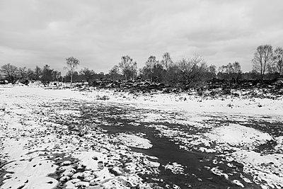 Verschneite Moorlandschaft - p1090m1558694 von Gavin Withey