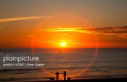 p442m1147927 von Peter Zoeller