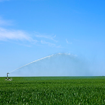 Watering on a field - p8130271 by B.Jaubert