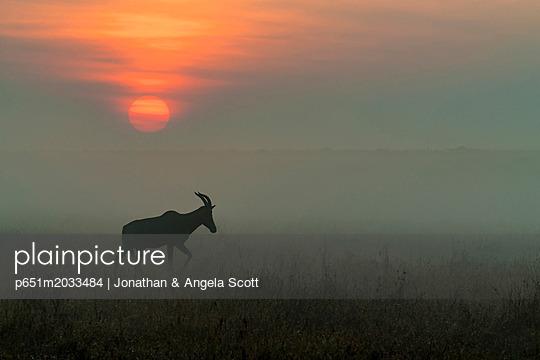 p651m2033484 von Jonathan & Angela Scott