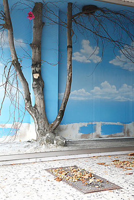 Schaufenster-Deko - p2370786 von Thordis Rüggeberg