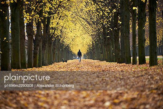 Walking alone - p1696m2293008 by Alexander Schönberg