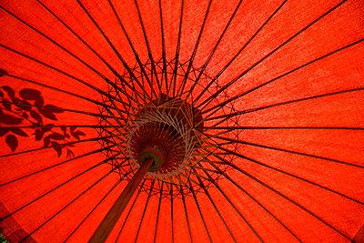 Roter Bambus-Schirm 1 - p067m1057299 von Thomas Grimm