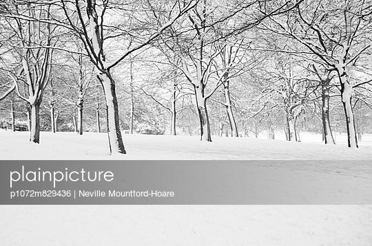 p1072m829436 von Neville Mountford-Hoare