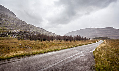Country road in Scotland - p1234m1044587 by mathias janke