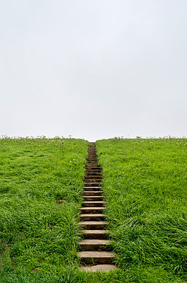 Stairs onto a dyke - p1132m931860 by Mischa Keijser