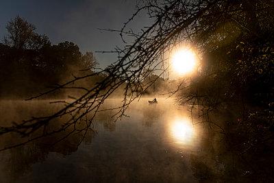 Sunrise canoe ride on foggy river. - p1166m2269654 by Cavan Images