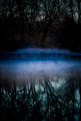 Fog - p248m995619 by BY