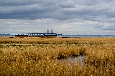 The Oresund Bridge - p1170m2081711 by Bjanka Kadic