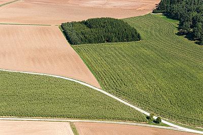 Straße zwischen Feldern - p1079m885279 von Ulrich Mertens