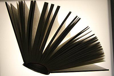 Buch aufgeschlagen - p2770163 von Dieter Reichelt