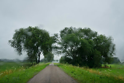 Country road from windscreen on car, Asperen, Zuid-Holland, Netherlands - p429m1494192 by Mischa Keijser