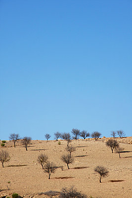Tamanar, Marokko - p865m889809 von atomara