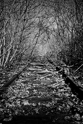 Railroad out of use - p248m891023 by BY