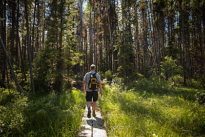 Mature man backpacking, hiking in sunny forest - p1192m2017218 by Hero Images