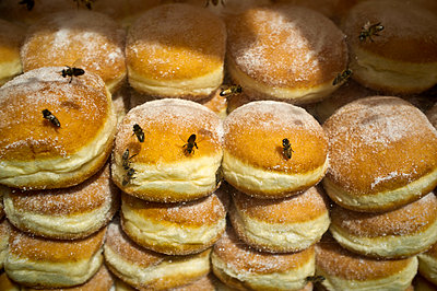 Bees on fresh donuts - p229m1048674 by Martin Langer
