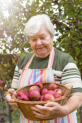 Portrait of senior woman with wickerbasket of apples - p300m1081381f by Miriam Dörr