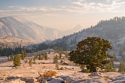 Half Dome and Clouds Rest mountains from Olmsted Point, Yosemite National Park, California, USA. Autumn (October) 2014. - p651m2007159 by Adam Burton