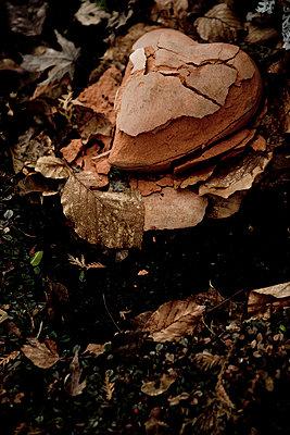 Herz aus Stein - p9793052 von Lang photography