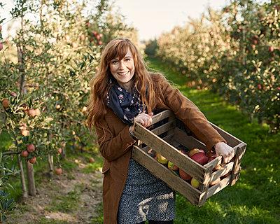 Frau bei der Apfelernte - p1124m1069626 von Willing-Holtz