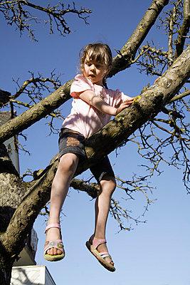Mädchen auf einem Baum - p8670182 von Thomas Degen