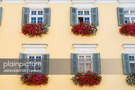 Austria, St. Wolfgang im Salzkammergut, Windows with shutters and flowers - p924m2300729 by Tamboly