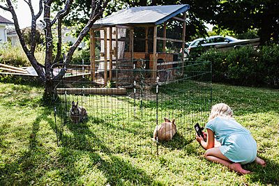 Girl taking picture of rabbit in cage - p312m2145874 by Anna Johnsson