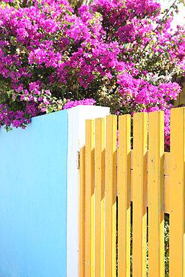 Entrance - p045m777542 by Jasmin Sander