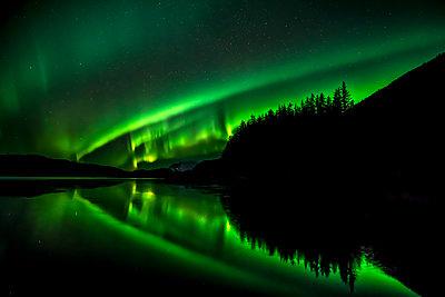 Green Northern lights, Tongass National Forest, near Juneau, Southeast Alaska; Alaska, United States of America - p442m2074421 by John Hyde