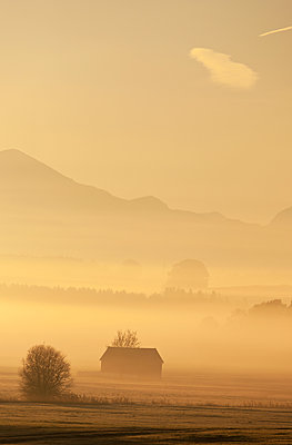 Morning fog in the country of Berchtesgaden - p533m1573835 by Böhm Monika