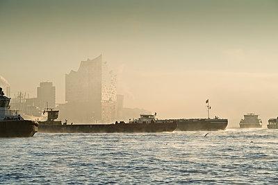 Schiffe auf der morgendlichen Elbe - p792m2134324 von Nico Vincent