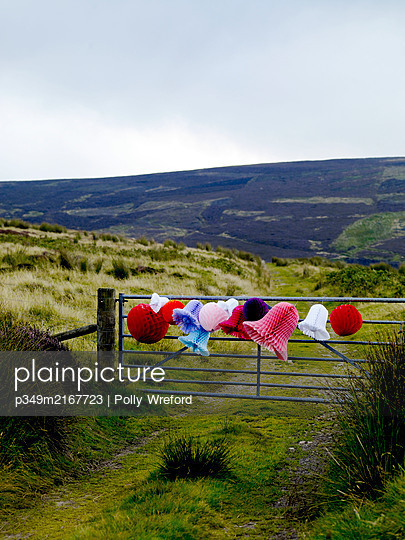 Christmas decorations tied to gate in remote Scottish farmland, UK - p349m2167723 by Polly Wreford