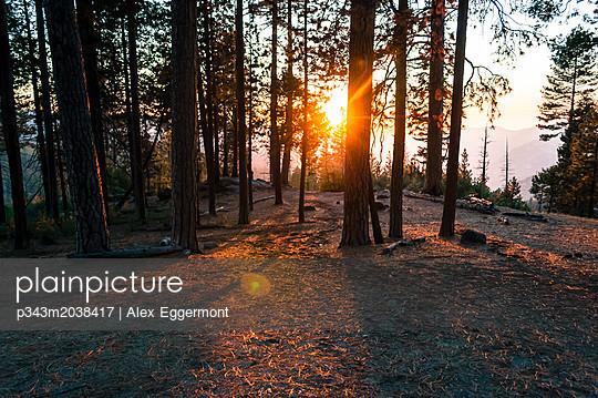 p343m2038417 von Alex Eggermont