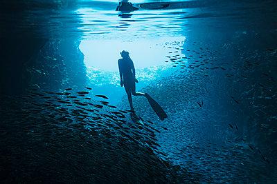 Woman snorkeling underwater among schools of fish, Vava'u, Tonga, Pacific Ocean - p1023m2024438 by Martin Barraud