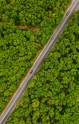 Aerial view of drone to road through green forest - p1596m2214821 by Nikola Spasov