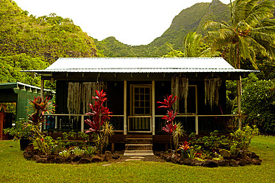 Hawaii House - p1260m1072185 by Ted Catanzaro