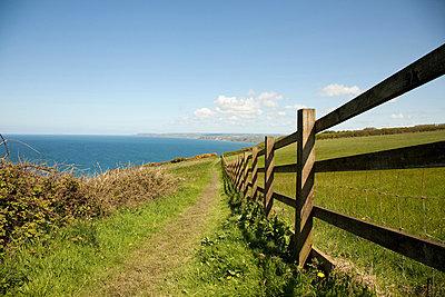 Coastal path, Cornwall, England, United Kingdom - p924m744540f by Janeycakes Photos