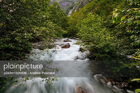 p343m1520836 von Andrew Peacock