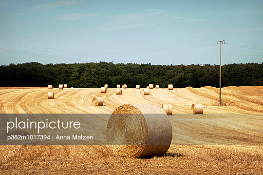 Straw harvest - p382m1017394 by Anna Matzen