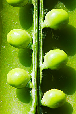 Close-up view of peas in pod - p343m2032688 by Ashley Cooper
