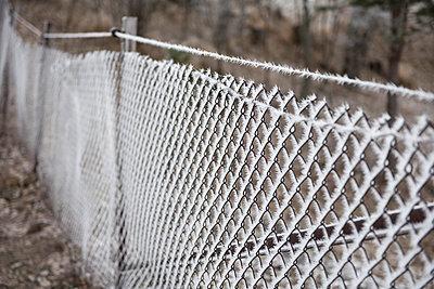 Wire fence - p1003m1104069 by Terje Rakke