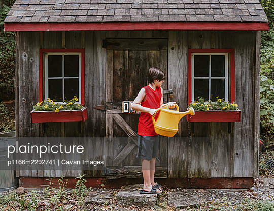 Boy watering flowers in window boxes of shed with big watering can. - p1166m2292741 by Cavan Images