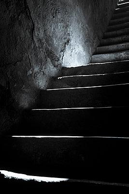 Cellar stairs - p1170m1111626 by Bjanka Kadic