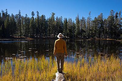 USA, California, Yosemite National Park, hiker standing on tree trunk in autumn - p300m2058960 by Kike Arnaiz