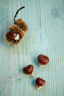 Chestnuts - p533m1104419 by Böhm Monika