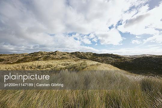 Dünenlandschaft auf Sylt - p1200m1147189 von Carsten Görling